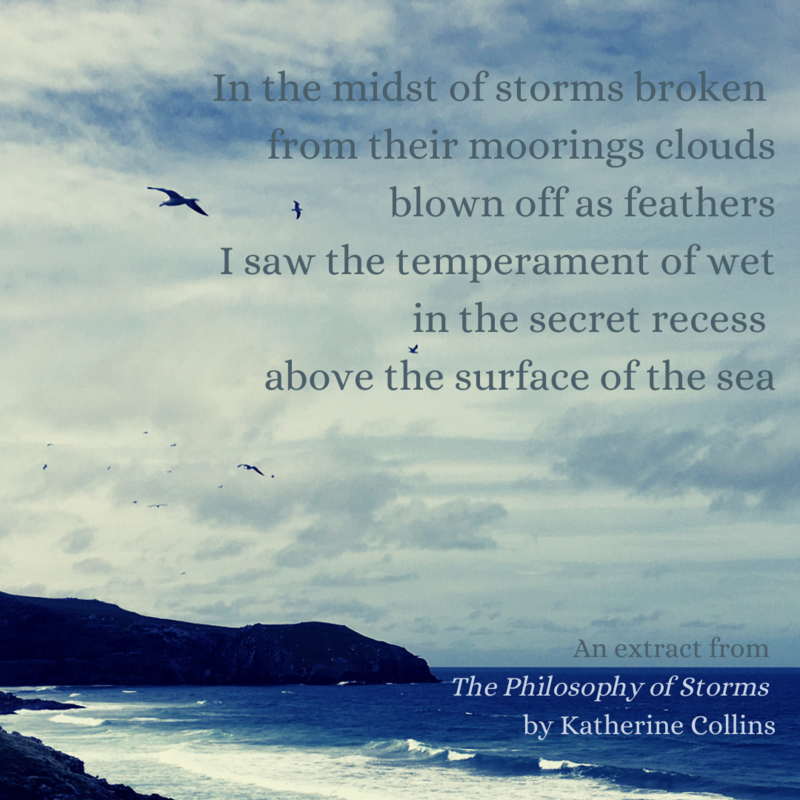 Extract from The Philosophy of Storms by Katherine Collins